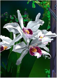 30-05_orchid.jpg